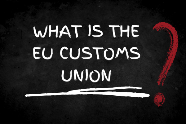 Image reading what is the EU customs union?
